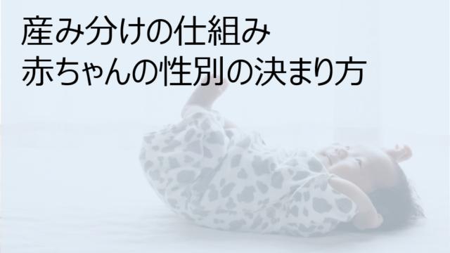 産み分けの仕組み 赤ちゃんの性別の決まり方
